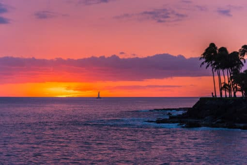 Sunset with Boat and Palm Trees