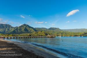Hanalei Bay Morning